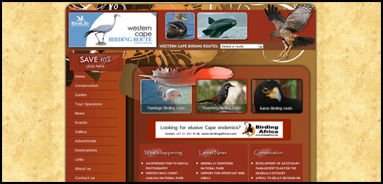 Western Cape Birding, South Africa, home page